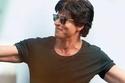 Shah Rukh Khan: Palm Jumeirah
