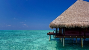 A WELLNESS JOURNEY IN THE MALDIVES