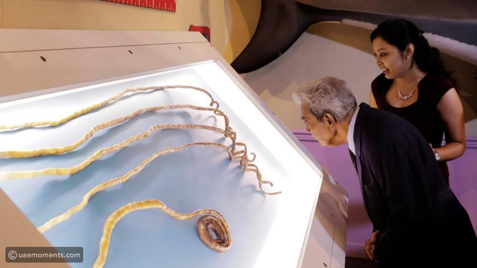 Guinness world record holder for the longest nails for 66 years